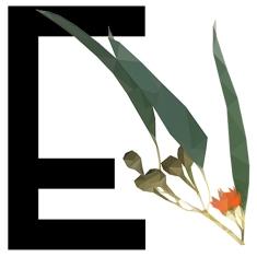 Ecolosophy Social Media Pic