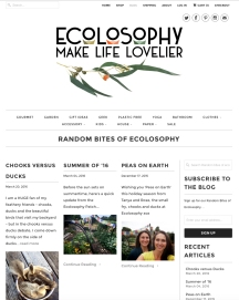 Ecolosophy Web Refresh - Blog page