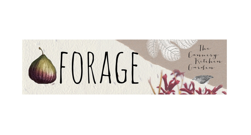 Forage | The Cannery KitchenGarden