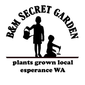 Secret Garden stamp design